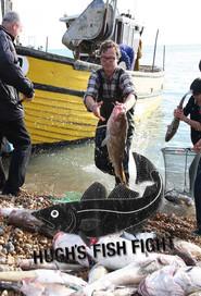 Watch Hugh's Fish Fight