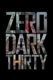 Watch Zero Dark Thirty