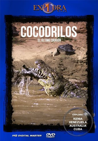 Crocodiles, the last dragon