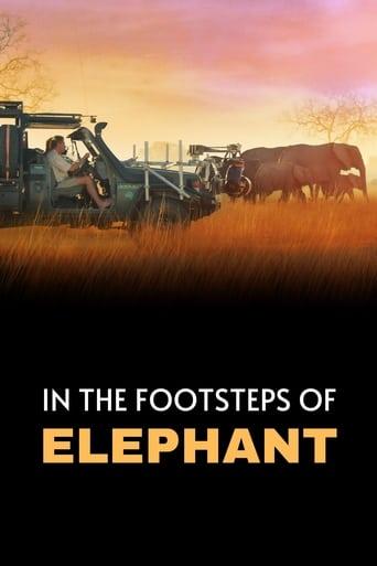 Tras los pasos del elefante