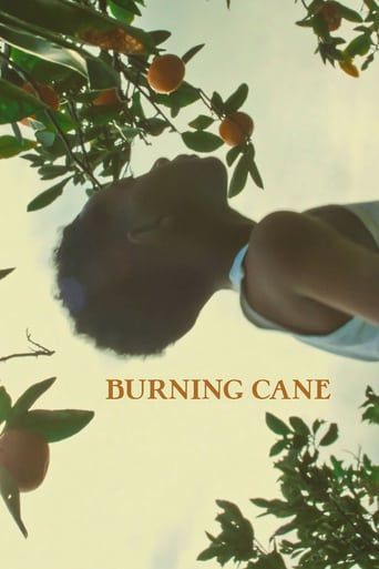 Watch Burning Cane