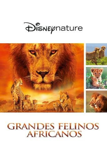 Grandes felinos africanos: el reino del coraje