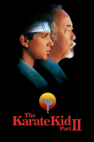Watch The Karate Kid Part II